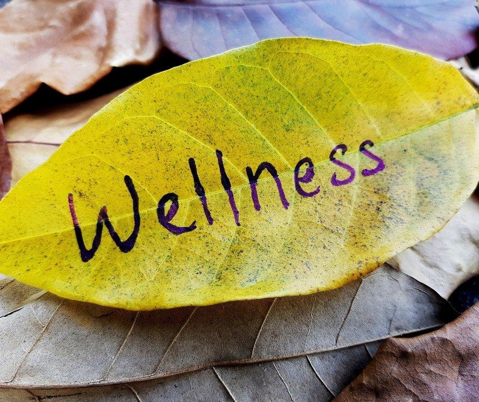 Whole Soul Wellness Yoga